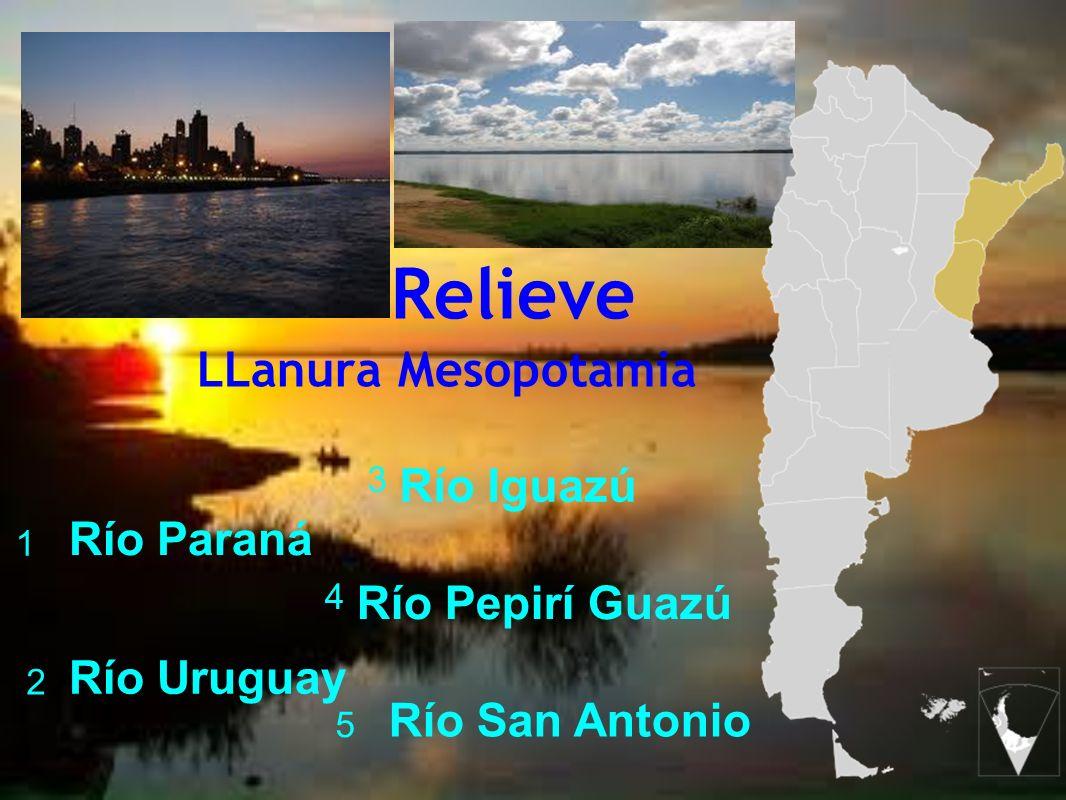 Relieve LLanura Mesopotamia Río Iguazú Río Paraná Río Pepirí Guazú