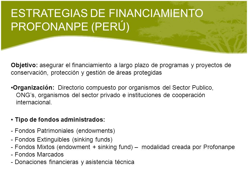 ESTRATEGIAS DE FINANCIAMIENTO PROFONANPE (PERÚ)