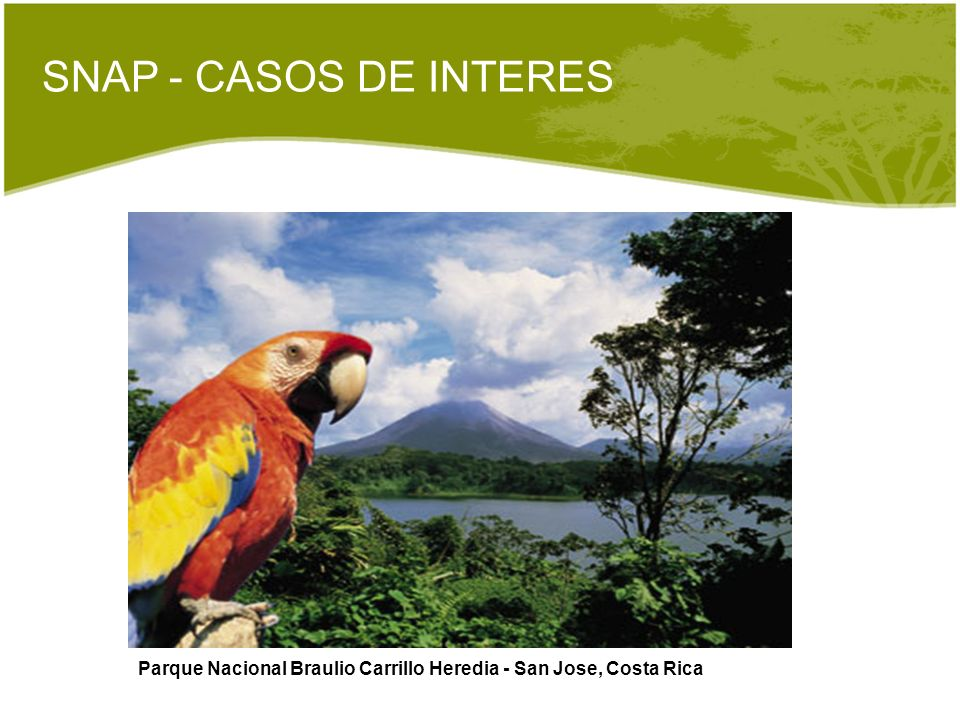 SNAP - CASOS DE INTERES Parque Nacional Braulio Carrillo Heredia - San Jose, Costa Rica
