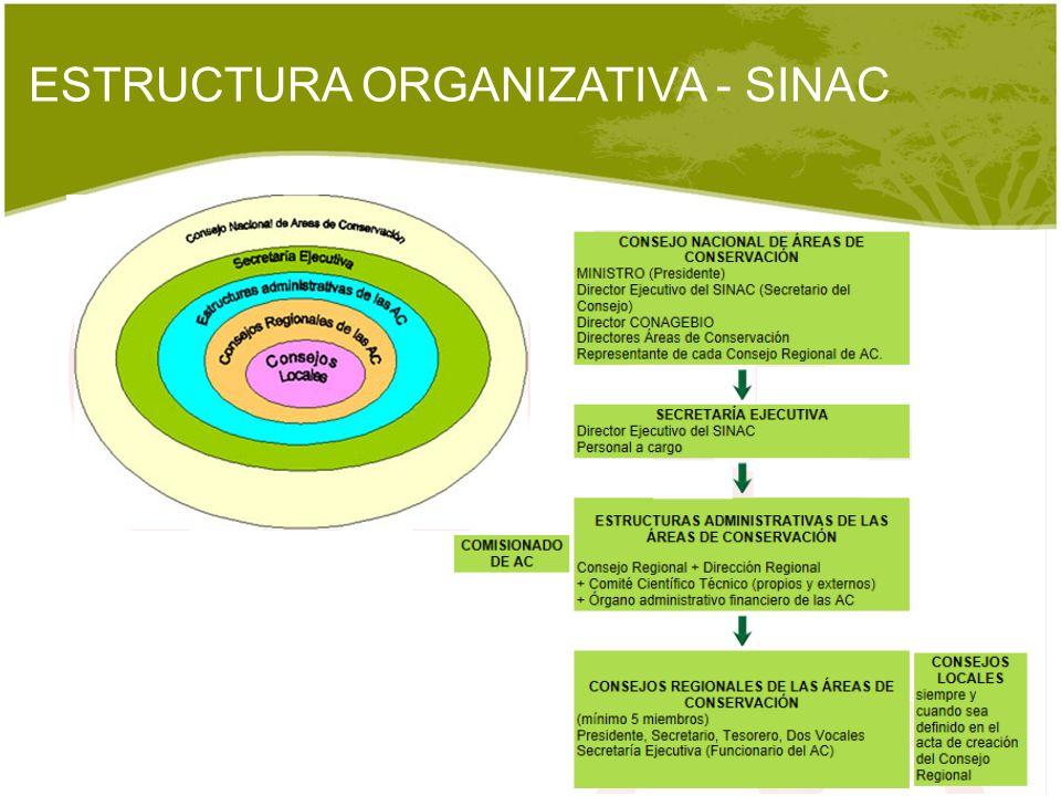 ESTRUCTURA ORGANIZATIVA - SINAC