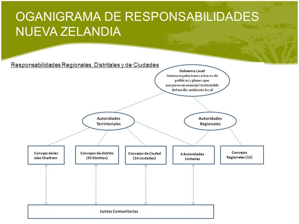 OGANIGRAMA DE RESPONSABILIDADES NUEVA ZELANDIA