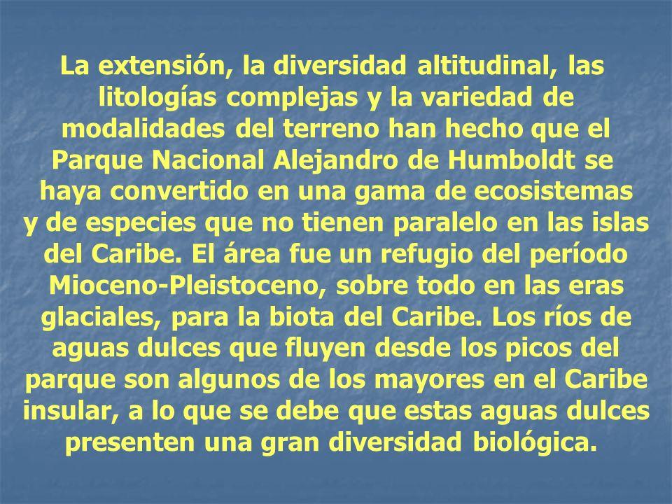 La extensión, la diversidad altitudinal, las