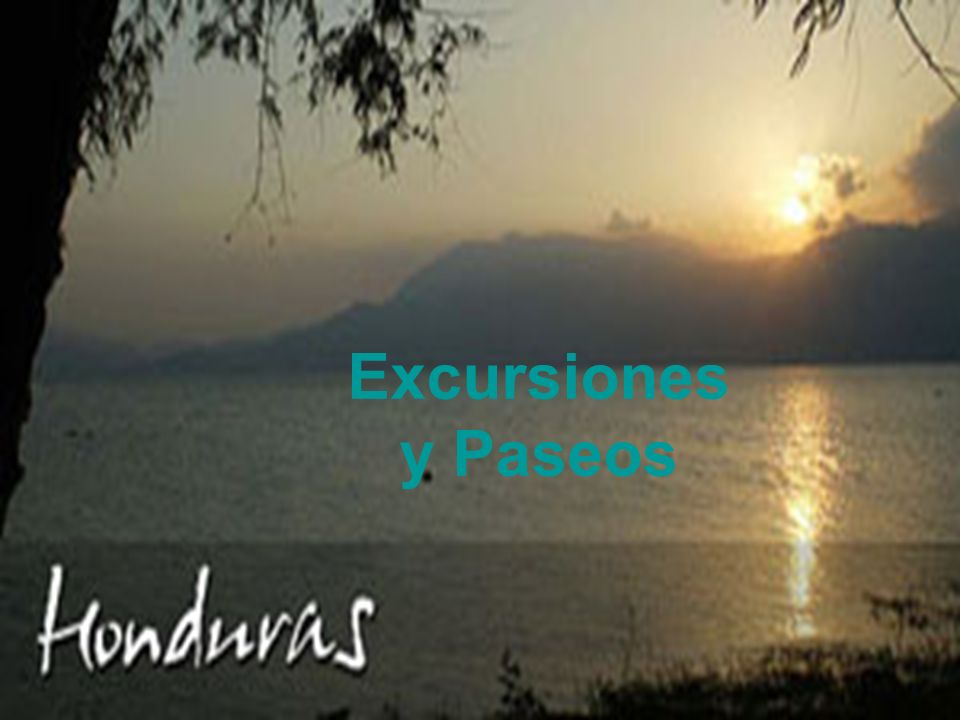 Excursiones y Paseos Excursiones y Paseos