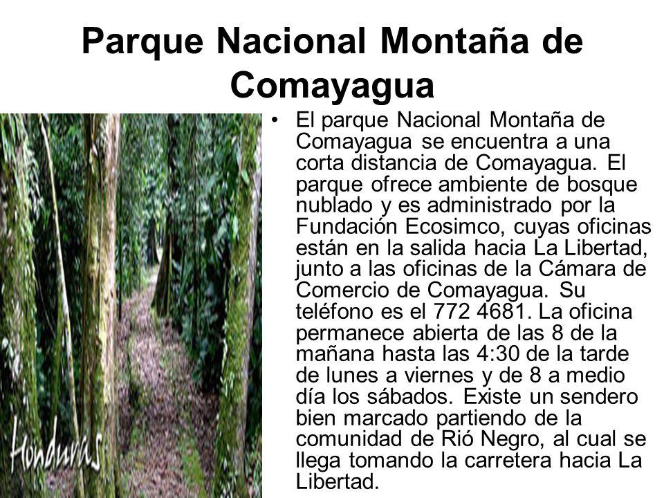 Parque Nacional Montaña de Comayagua