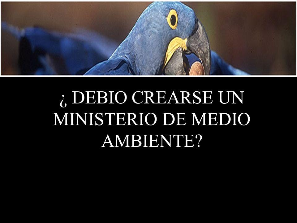¿ DEBIO CREARSE UN MINISTERIO DE MEDIO AMBIENTE