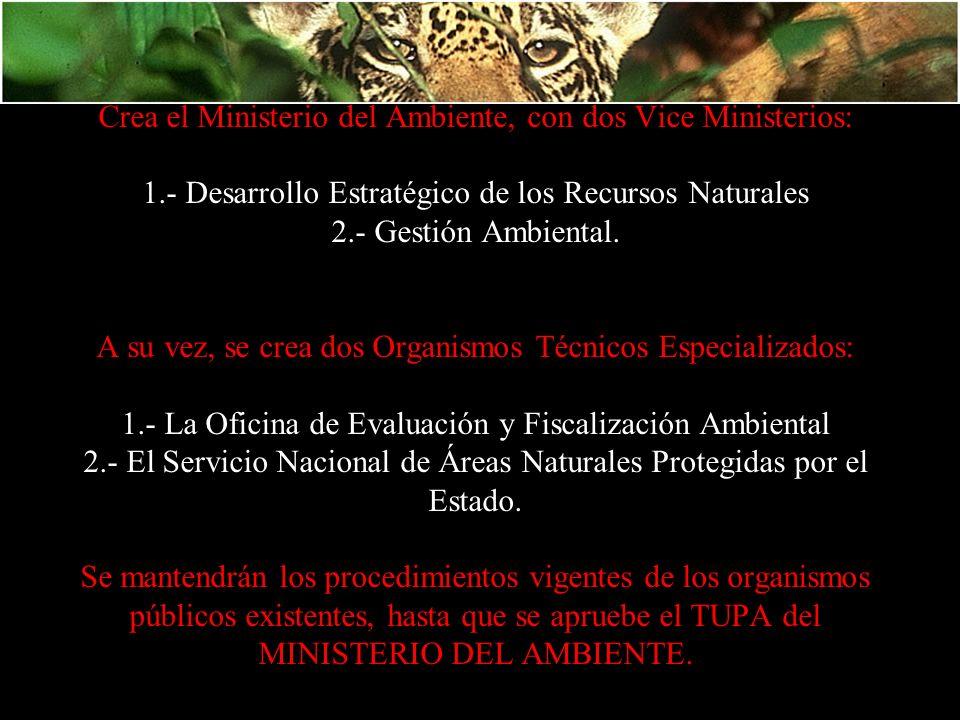 Crea el Ministerio del Ambiente, con dos Vice Ministerios: 1
