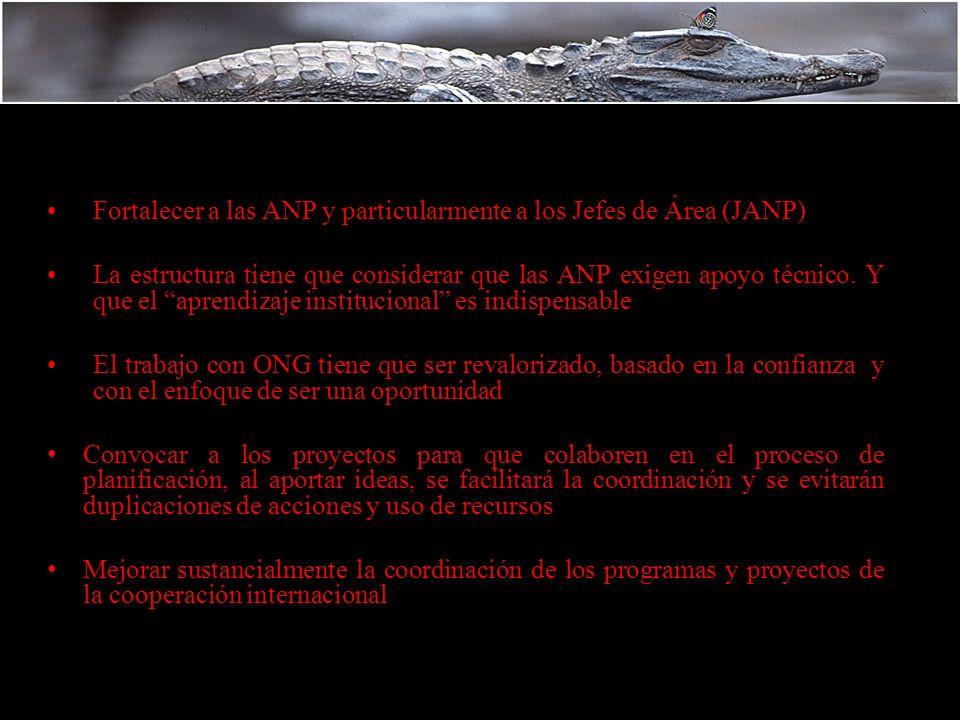 Fortalecer a las ANP y particularmente a los Jefes de Área (JANP)