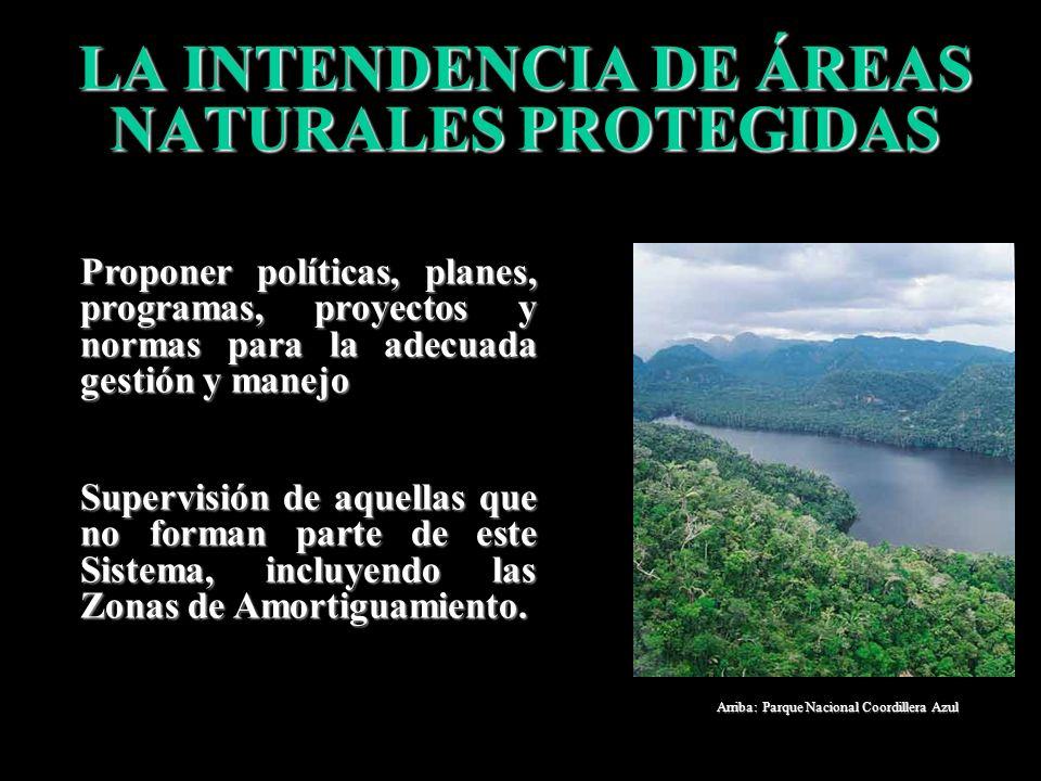 LA INTENDENCIA DE ÁREAS NATURALES PROTEGIDAS