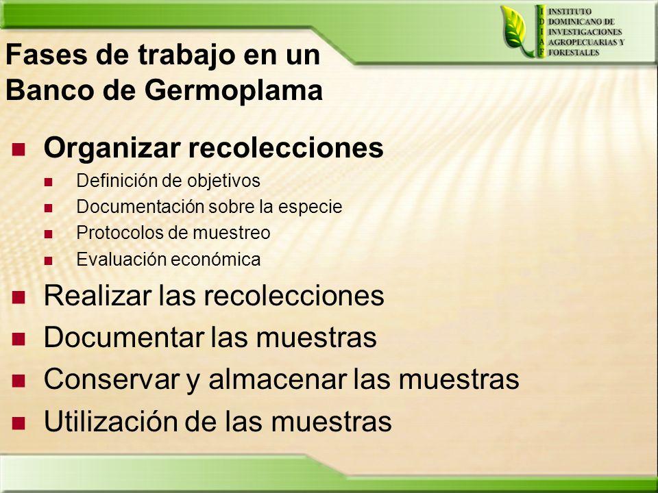 Fases de trabajo en un Banco de Germoplama