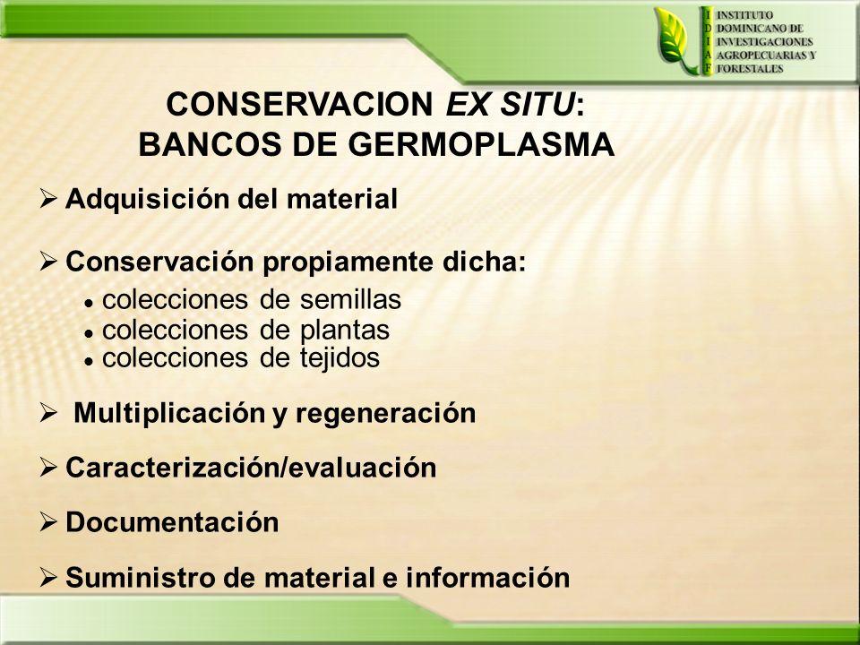 CONSERVACION EX SITU: BANCOS DE GERMOPLASMA Adquisición del material