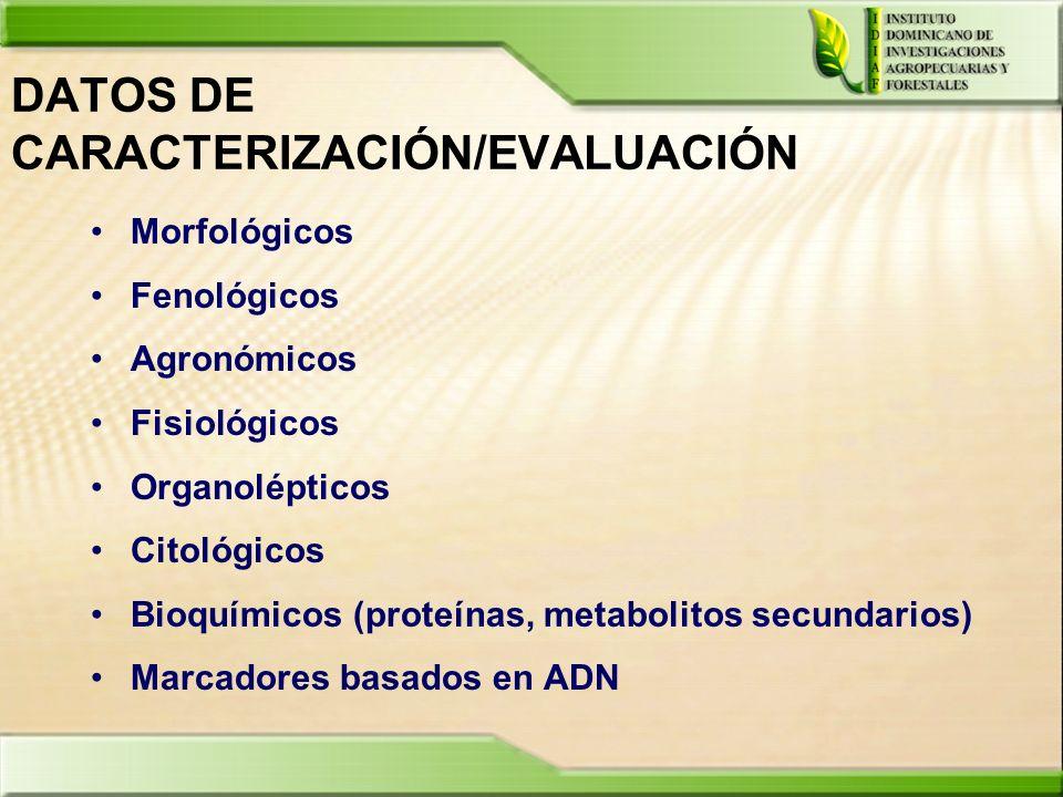 DATOS DE CARACTERIZACIÓN/EVALUACIÓN