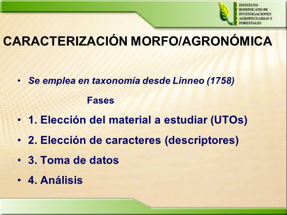 CARACTERIZACIÓN MORFO/AGRONÓMICA