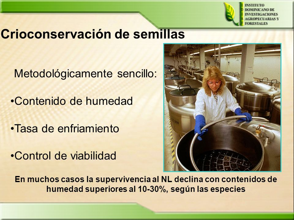 Crioconservación de semillas
