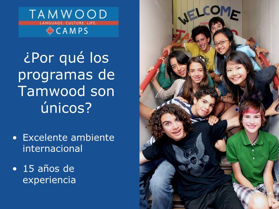 ¿Por qué los programas de Tamwood son únicos