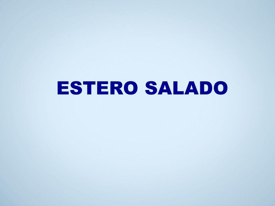 2 ESTERO SALADO