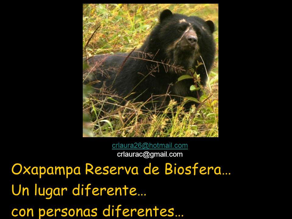 Oxapampa Reserva de Biosfera… Un lugar diferente…