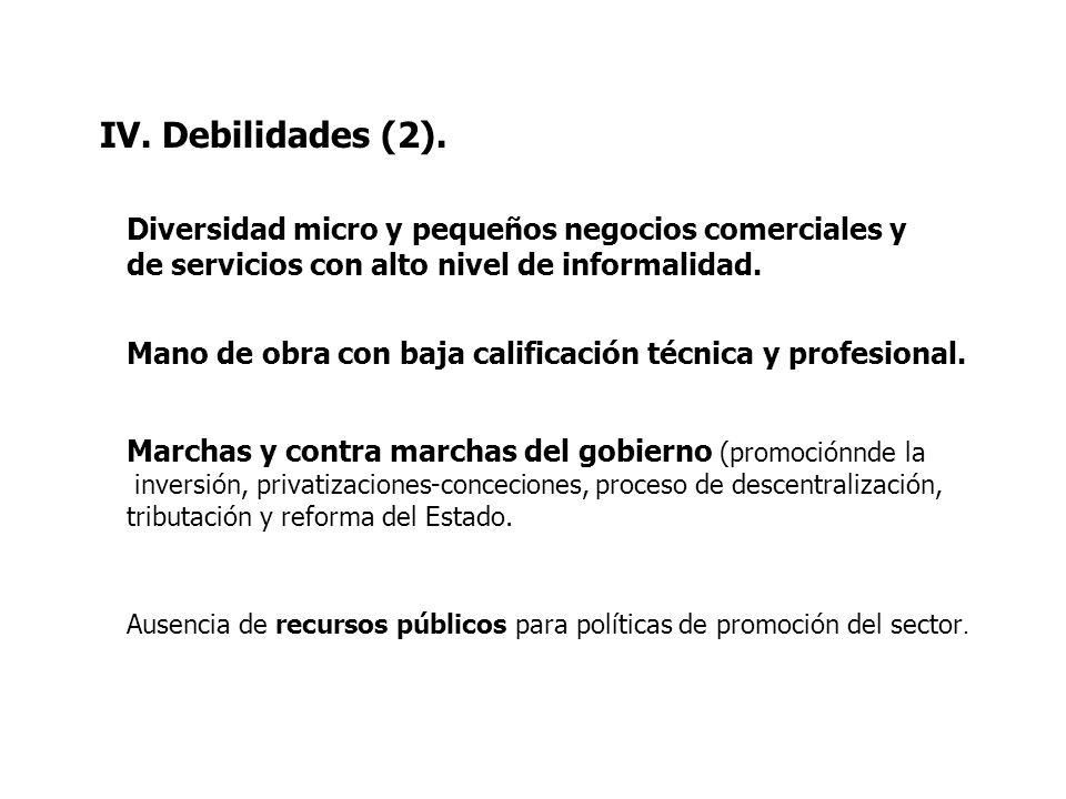 IV. Debilidades (2). Diversidad micro y pequeños negocios comerciales y de servicios con alto nivel de informalidad.