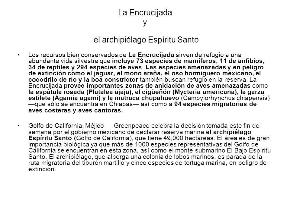 La Encrucijada y el archipiélago Espíritu Santo