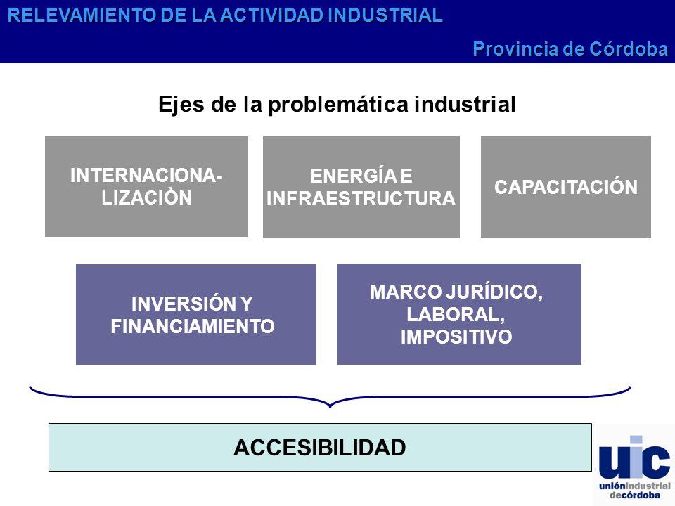 Ejes de la problemática industrial INTERNACIONA-LIZACIÒN