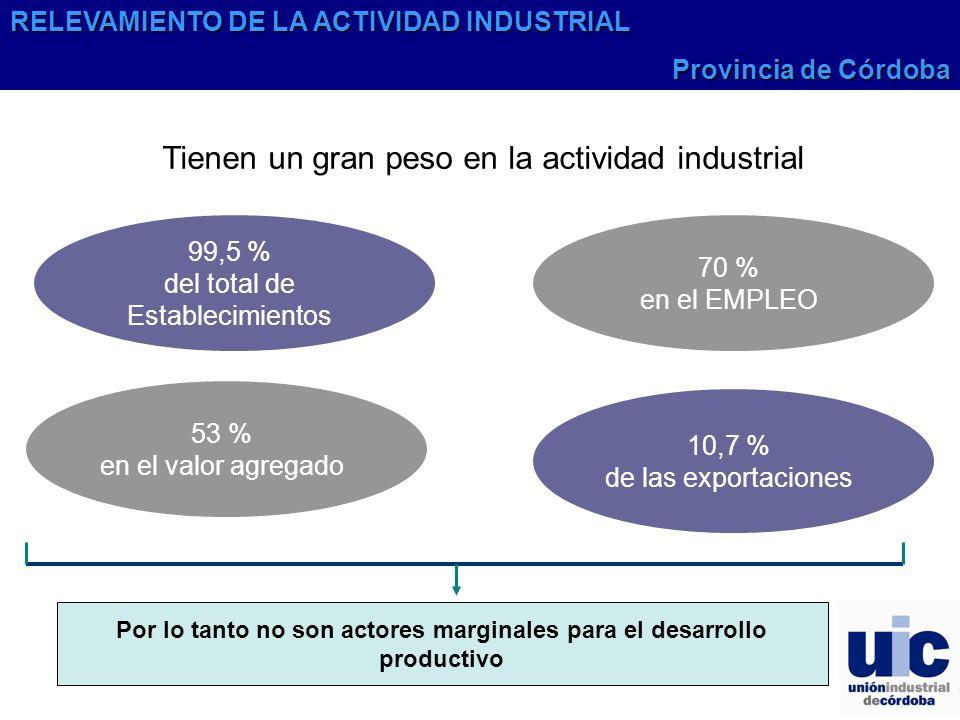 Por lo tanto no son actores marginales para el desarrollo productivo