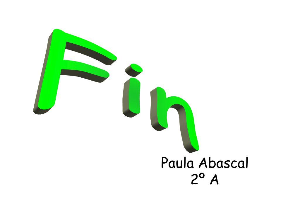 Fin Paula Abascal 2º A