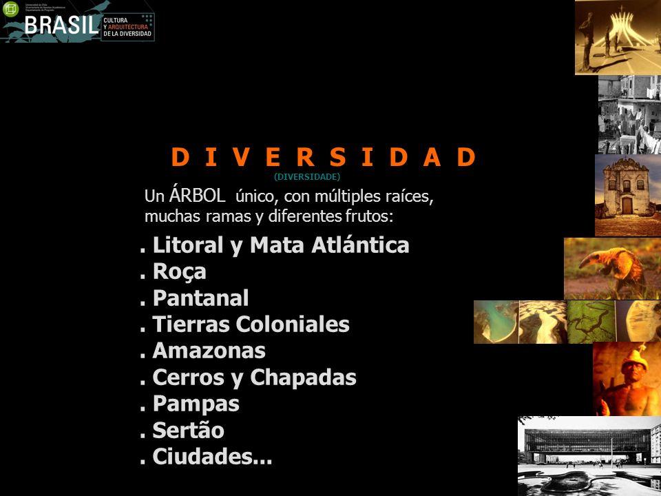 D I V E R S I D A D . Litoral y Mata Atlántica . Roça . Pantanal
