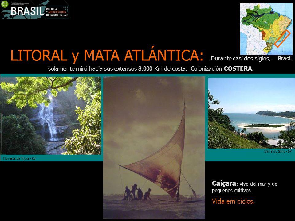 LITORAL y MATA ATLÁNTICA: Durante casi dos siglos, Brasil solamente miró hacia sus extensos 8.000 Km de costa. Colonización COSTERA.