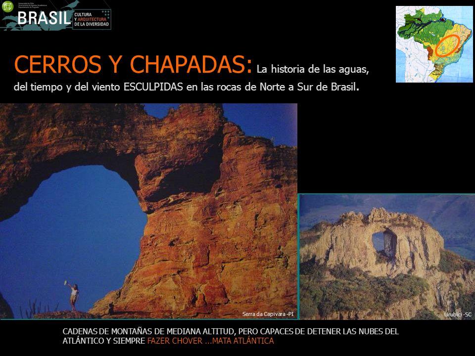 CERROS Y CHAPADAS: La historia de las aguas, del tiempo y del viento ESCULPIDAS en las rocas de Norte a Sur de Brasil.