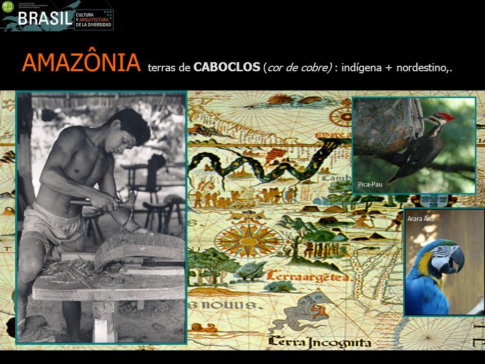 AMAZÔNIA terras de CABOCLOS (cor de cobre) : indígena + nordestino,.