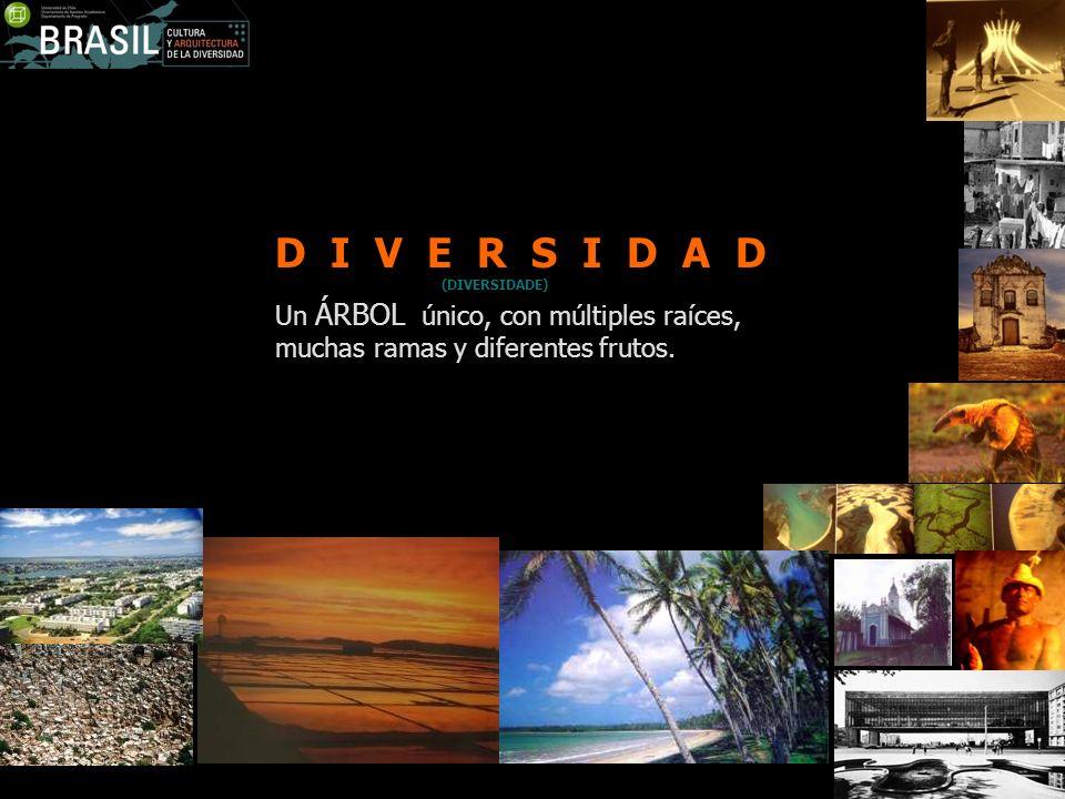D I V E R S I D A D(DIVERSIDADE) Un ÁRBOL único, con múltiples raíces, muchas ramas y diferentes frutos.