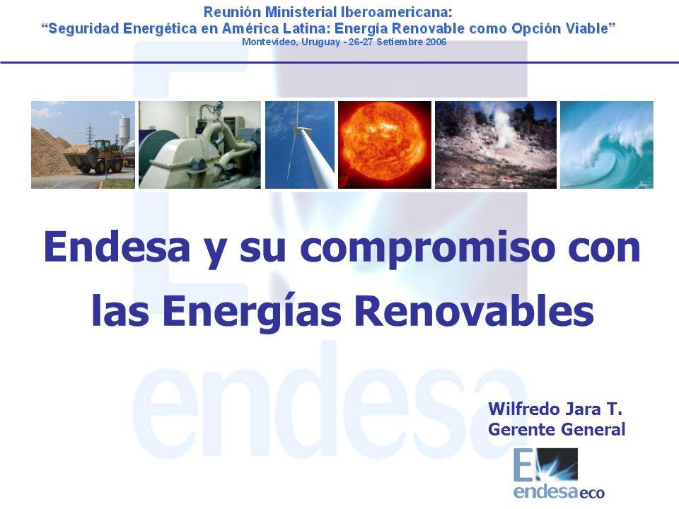 Endesa y su compromiso con las Energías Renovables