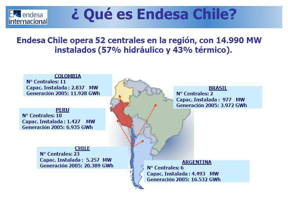 ¿ Qué es Endesa Chile Endesa Chile opera 52 centrales en la región, con 14.990 MW instalados (57% hidráulico y 43% térmico).