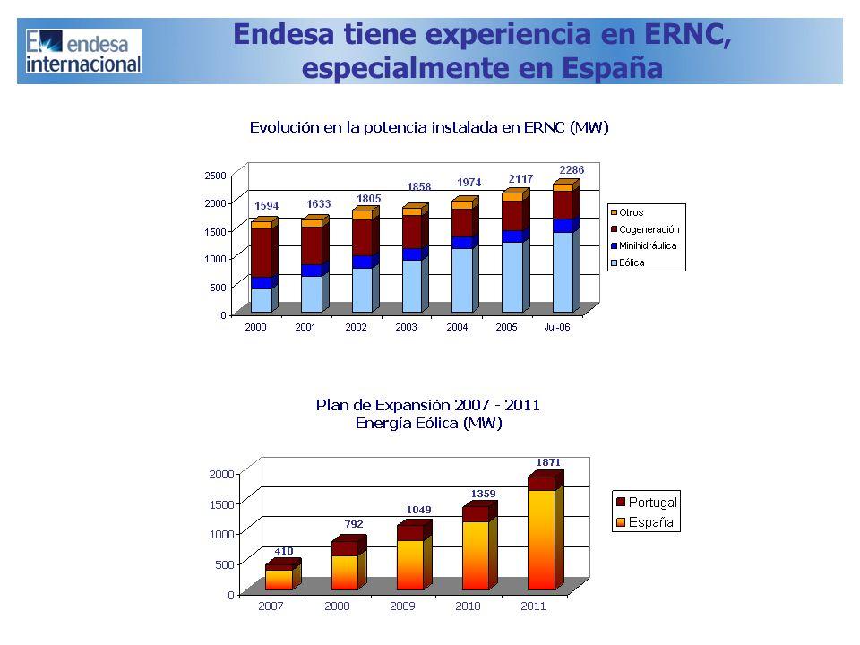 Endesa tiene experiencia en ERNC, especialmente en España