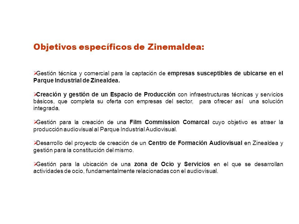 Objetivos específicos de Zinemaldea: