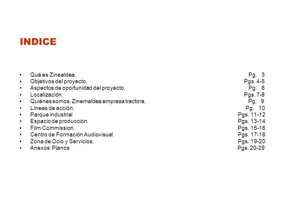 INDICE Qué es Zinealdea. Pg. 3 Objetivos del proyecto. Pgs. 4-5