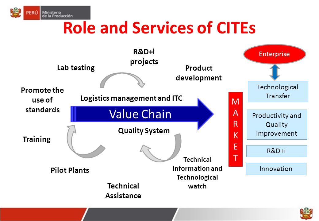 Role and Services of CITEs