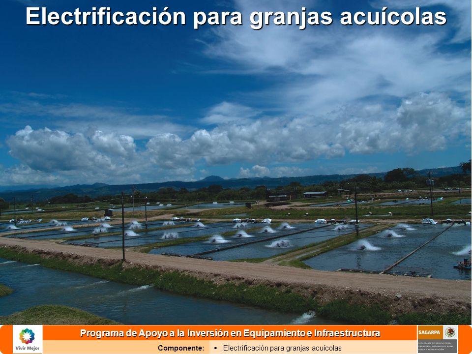 Electrificación para granjas acuícolas