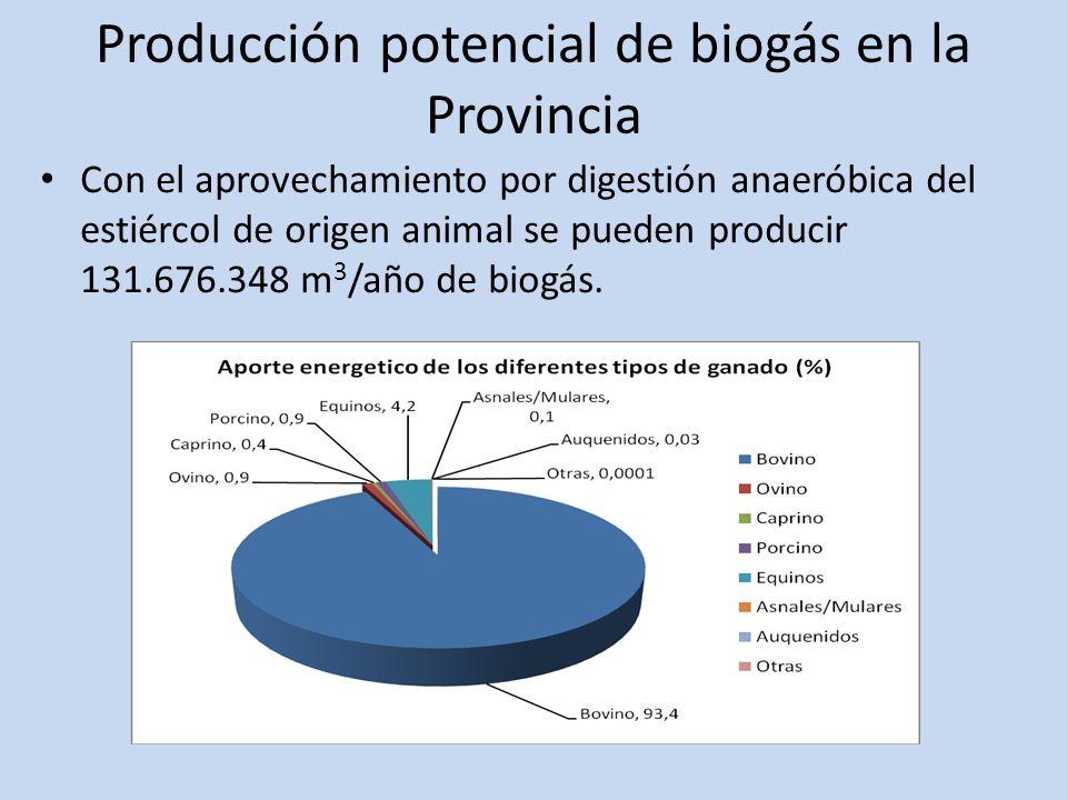Producción potencial de biogás en la Provincia