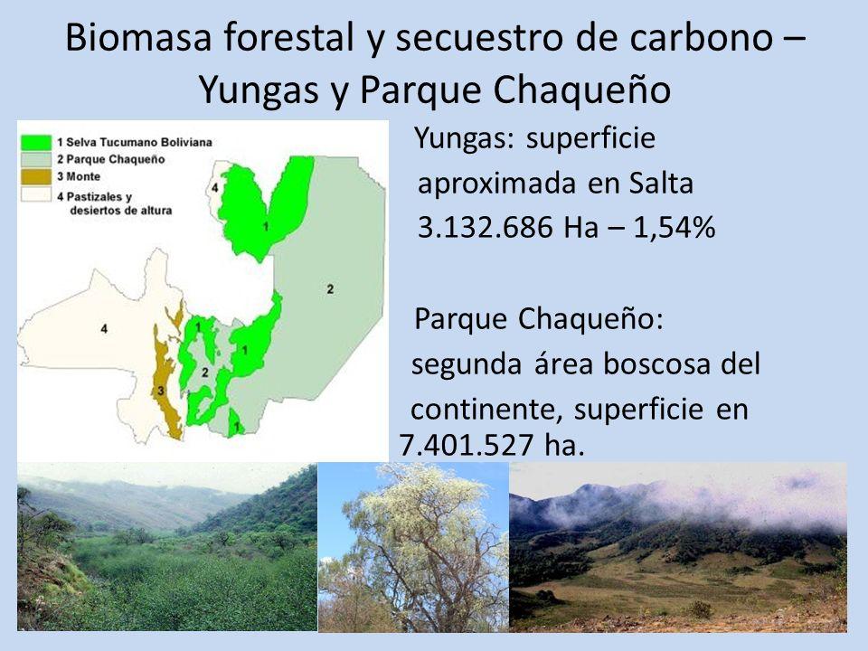 Biomasa forestal y secuestro de carbono – Yungas y Parque Chaqueño