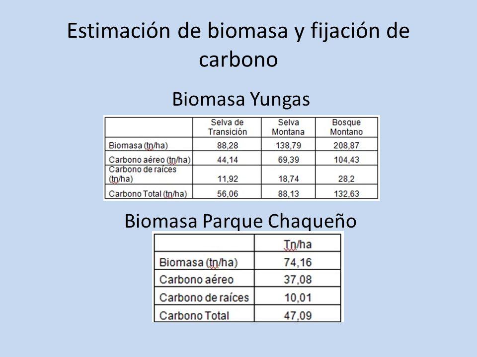 Estimación de biomasa y fijación de carbono