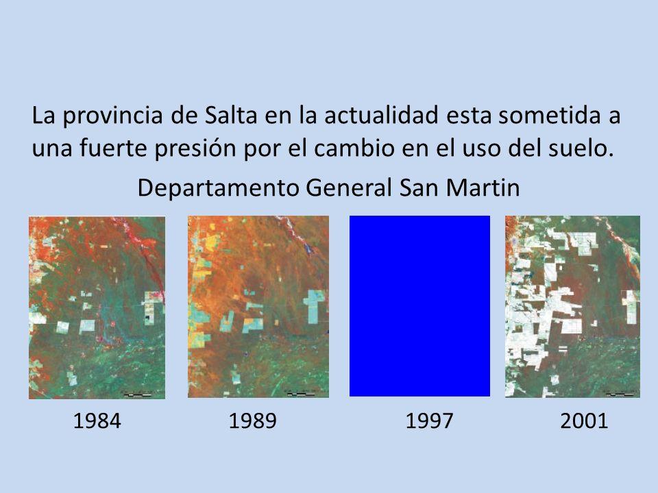Departamento General San Martin