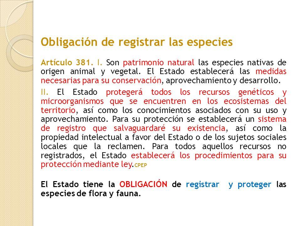 Obligación de registrar las especies