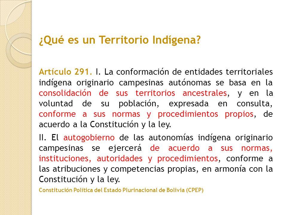 ¿Qué es un Territorio Indígena