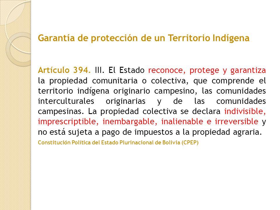 Garantía de protección de un Territorio Indígena
