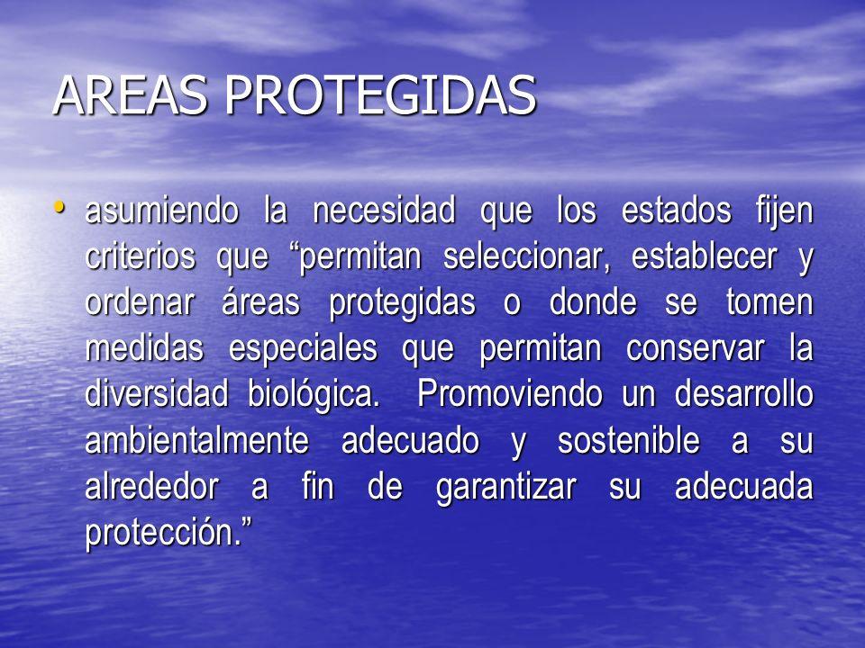 AREAS PROTEGIDAS