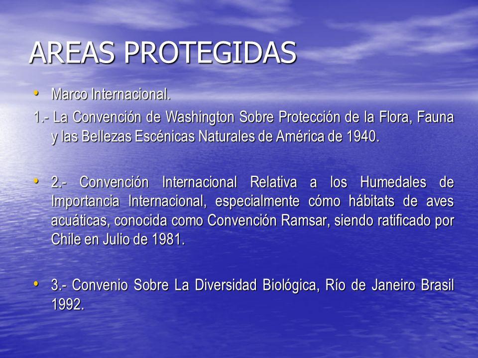AREAS PROTEGIDAS Marco Internacional.