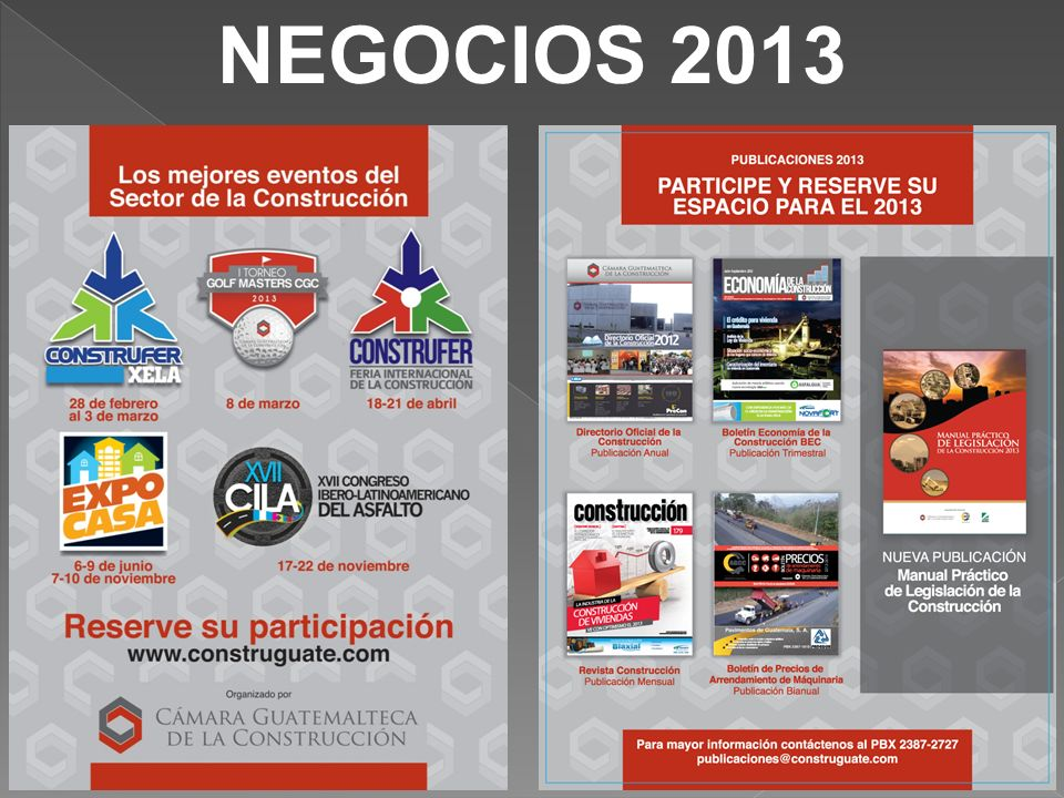 NEGOCIOS 2013