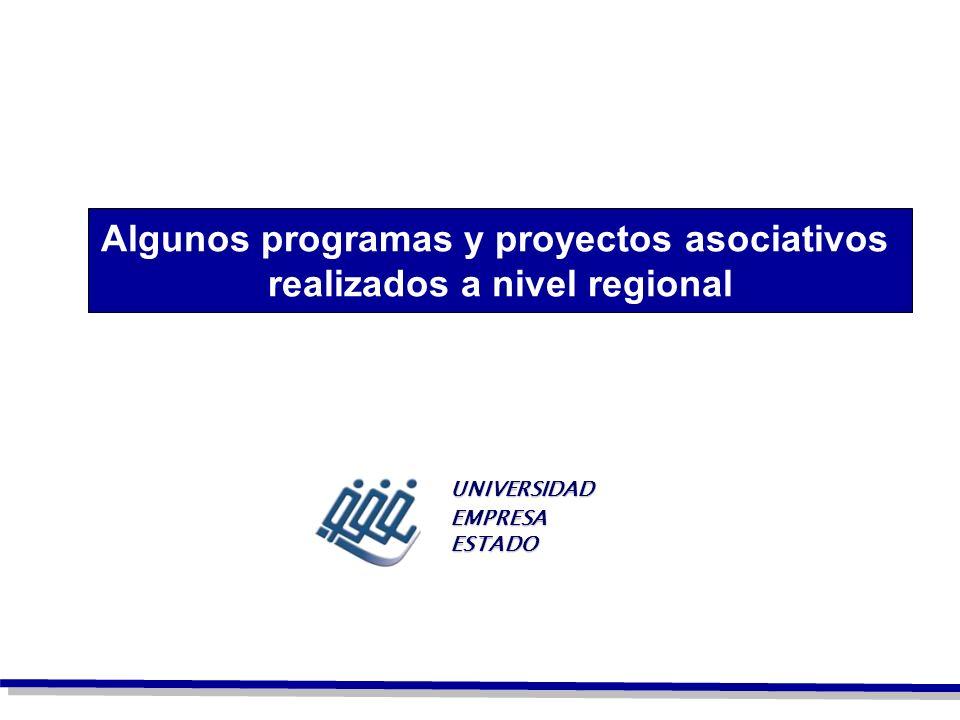Algunos programas y proyectos asociativos realizados a nivel regional