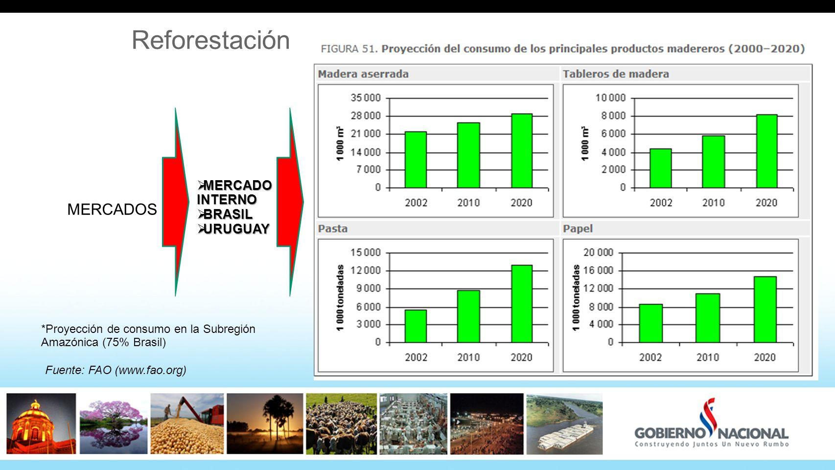 Reforestación MERCADOS MERCADO INTERNO BRASIL URUGUAY