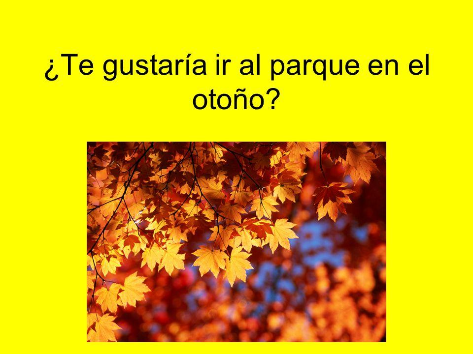 ¿Te gustaría ir al parque en el otoño